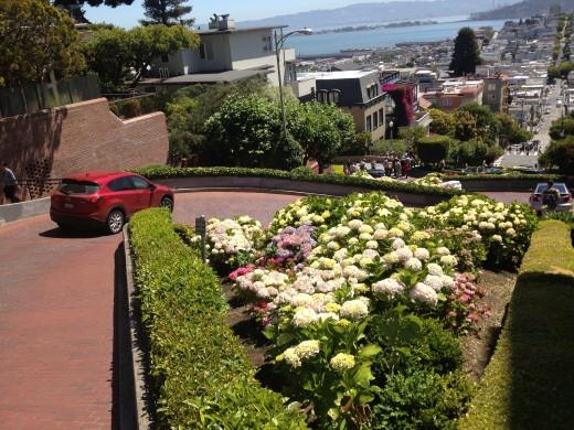 Lombard St San Fran
